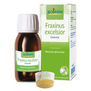 FRAXINUS EXCELSIOR MG 60ML INT